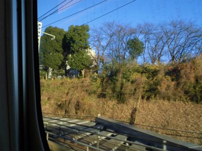 f:id:kabutoyama-tigers:20150104164115j:image