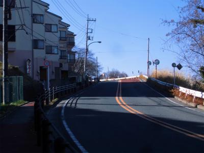 f:id:kabutoyama-tigers:20150104164222j:image