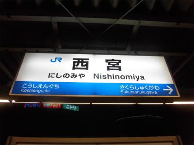 f:id:kabutoyama-tigers:20150104172026j:image