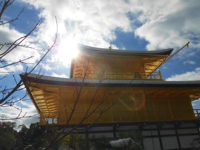 f:id:kabutoyama-tigers:20150112182304j:image
