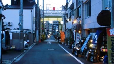 f:id:kabutoyama-tigers:20150301114525j:image
