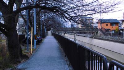 f:id:kabutoyama-tigers:20150301115926j:image
