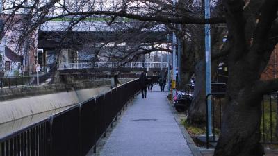 f:id:kabutoyama-tigers:20150301125622j:image