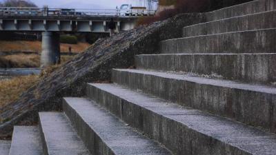 f:id:kabutoyama-tigers:20150301152513j:image