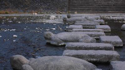 f:id:kabutoyama-tigers:20150302144506j:image
