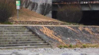 f:id:kabutoyama-tigers:20150302150122j:image