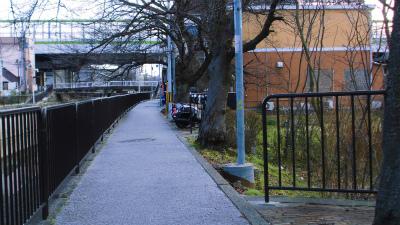 f:id:kabutoyama-tigers:20150303140043j:image