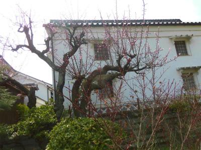 f:id:kabutoyama-tigers:20150404081228j:image