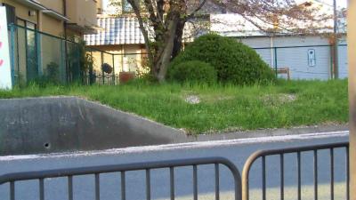 f:id:kabutoyama-tigers:20150410153622j:image