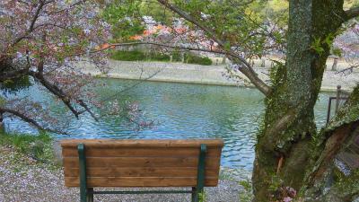 f:id:kabutoyama-tigers:20150410160112j:image