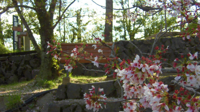f:id:kabutoyama-tigers:20150410161220j:image