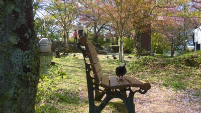 f:id:kabutoyama-tigers:20150410204809j:image