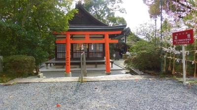 f:id:kabutoyama-tigers:20150410210743j:image