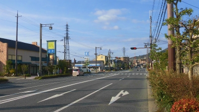 f:id:kabutoyama-tigers:20150410211932j:image