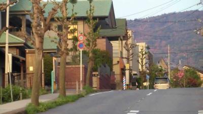 f:id:kabutoyama-tigers:20150417134151j:image