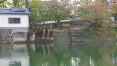 f:id:kabutoyama-tigers:20150417135223j:image