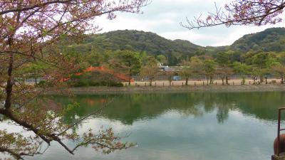 f:id:kabutoyama-tigers:20150417135624j:image