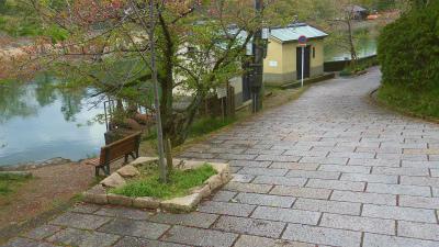 f:id:kabutoyama-tigers:20150417140042j:image