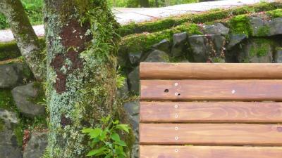 f:id:kabutoyama-tigers:20150417141456j:image