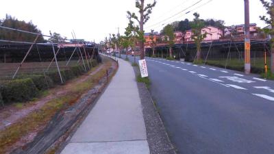 f:id:kabutoyama-tigers:20150423140238j:image