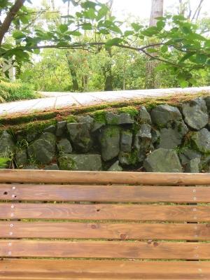 f:id:kabutoyama-tigers:20150517050356j:image:w360