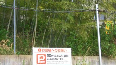 f:id:kabutoyama-tigers:20150517170221j:image