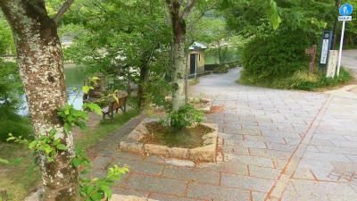 f:id:kabutoyama-tigers:20150517194810j:image