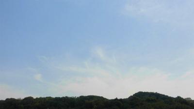 f:id:kabutoyama-tigers:20150524063729j:image