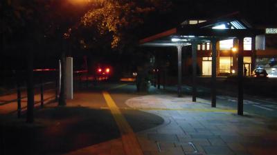 f:id:kabutoyama-tigers:20150524083428j:image