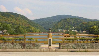 f:id:kabutoyama-tigers:20150524190949j:image