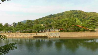 f:id:kabutoyama-tigers:20150529174949j:image