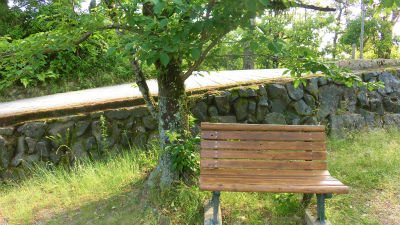 f:id:kabutoyama-tigers:20150529175356j:image
