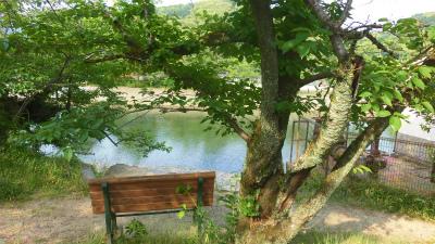 f:id:kabutoyama-tigers:20150529181344j:image
