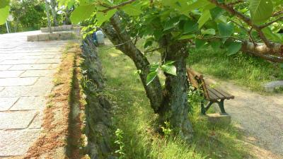 f:id:kabutoyama-tigers:20150529181531j:image