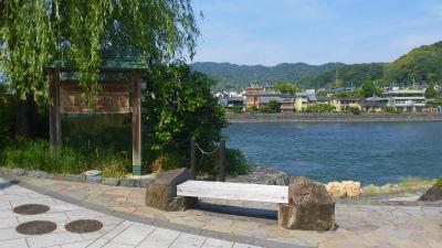 f:id:kabutoyama-tigers:20150529183915j:image