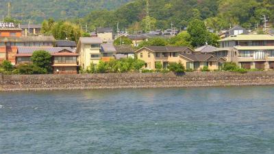 f:id:kabutoyama-tigers:20150529184111j:image
