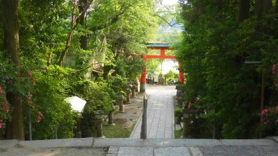f:id:kabutoyama-tigers:20150530055809j:image