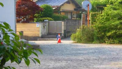 f:id:kabutoyama-tigers:20150530062918j:image