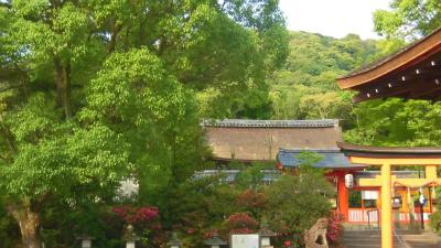 f:id:kabutoyama-tigers:20150530063802j:image