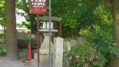 f:id:kabutoyama-tigers:20150530064352j:image