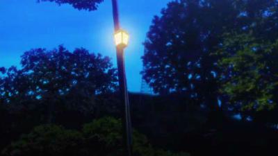 f:id:kabutoyama-tigers:20150530065328j:image