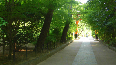 f:id:kabutoyama-tigers:20150530065716j:image