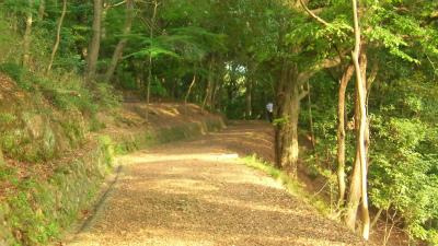 f:id:kabutoyama-tigers:20150530072543j:image