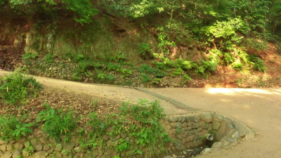 f:id:kabutoyama-tigers:20150530072857j:image