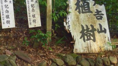 f:id:kabutoyama-tigers:20150530073238j:image