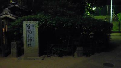 f:id:kabutoyama-tigers:20150531072018j:image