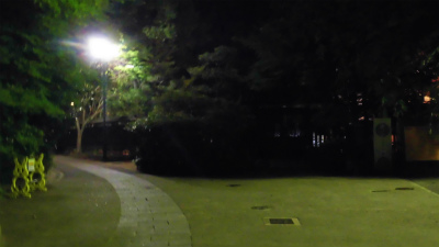 f:id:kabutoyama-tigers:20150531072630j:image