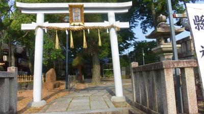 f:id:kabutoyama-tigers:20150531074337j:image