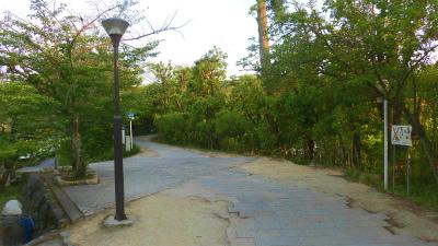 f:id:kabutoyama-tigers:20150531080812j:image