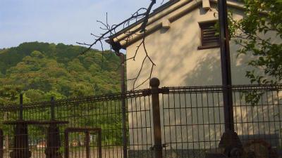 f:id:kabutoyama-tigers:20150531183944j:image